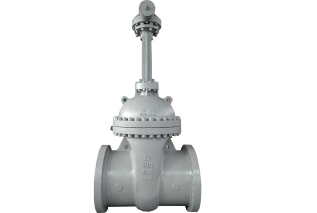 Bloted Bonnet Gate Valve