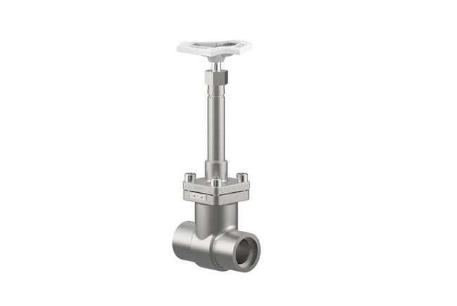 Crogenic Gate Valve